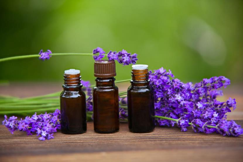 meilleures baskets 0da78 6ec1a Lavender oil might help you relax, but it can also impact ...