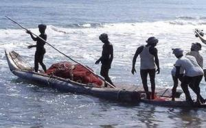 5 Indian fishermen apprehended by Sri Lankan Navy