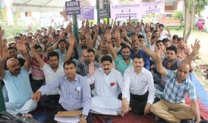 Patwaris' strike enters day 36