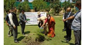 Chief Justice launches annual week long plantatio...