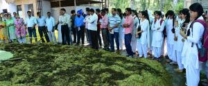 7-day training on Button Mushroom cultivation com...