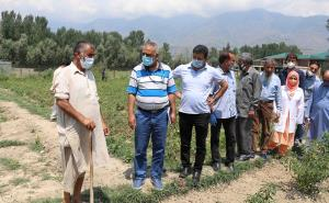 Director Agriculture Kashmir reviews ongoing deve...