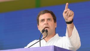 Lok Sabha Elections 2019: Rahul