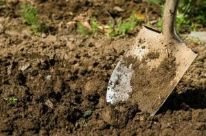 Three children buried alive while digging soil in...