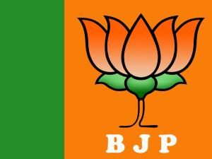 BJP emerges winner in 4 south Kashmir districts, ...