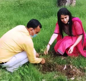 Gandhi Nagar Treasury conducts plantation drive