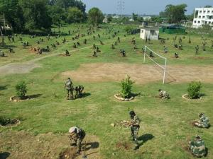 BSF plants over 40,000 saplings in Jammu region