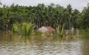 India may suffer devastating climate change impac...