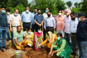 High density fruit tree plantation drive launched...