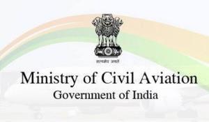 Domestic cargo flights strengthens India
