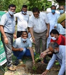 JMC Mayor launches plantation drive under Greenin...