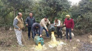 650 litres of Lahan destroyed