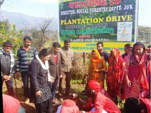 Social Forestry Division Udhampur launches planta...