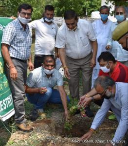 Plantation drive under greening Jammu held at Sun...