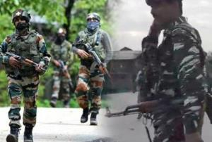 Tehreek-ul-Mujahideen terrorist killed in Pulwama