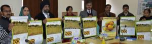 Director Horticulture releases department