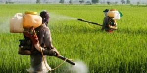 One-fourth of pesticide samples in open market su...