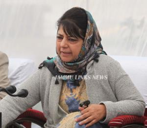 Mehbooba Mufti anguished over cross border killin...