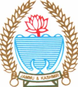 J&K government seeks report on orders issued by d...