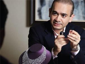 DRT notices to Nirav Modi, family to recover Rs 7...