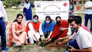 GCW Gandhi Nagar celebrates Van Mahotsav Week