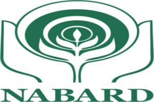 Out of 313 schemes under NABARD, 99 have been com...
