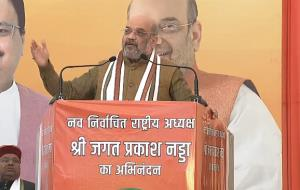 BJP will become stronger, expand further under Na...