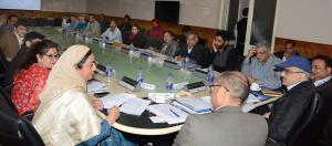 Atal Dulloo chairs Executive Committee meet of St...