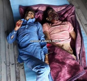 Two brothers injured in Reasi road accident