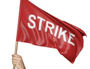 Power employees oppose privatization, strike on S...