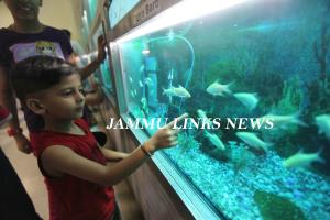Over 4.53 lakh tourists visited Bagh-e-Bahu Aquar...