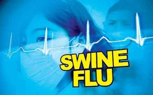 31 deaths due to swine flu in Punjab: Health mini...