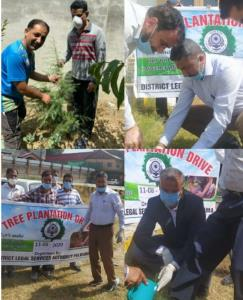 DLSA Pulwama launched Plantation drive